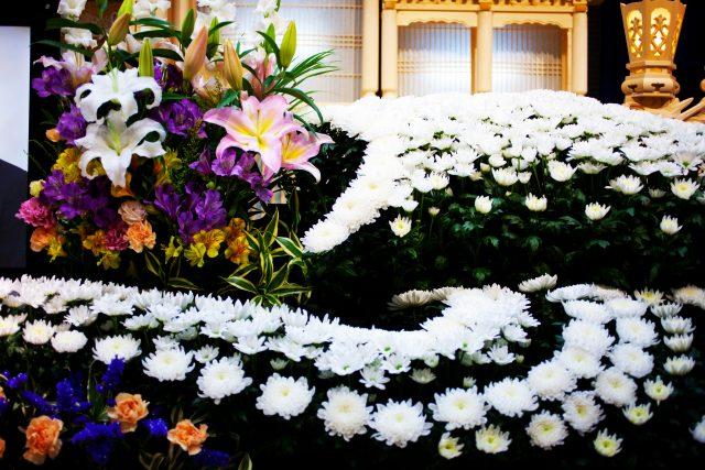 大きな花が並ぶ
