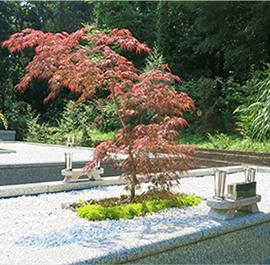 紅葉の季節の樹木葬